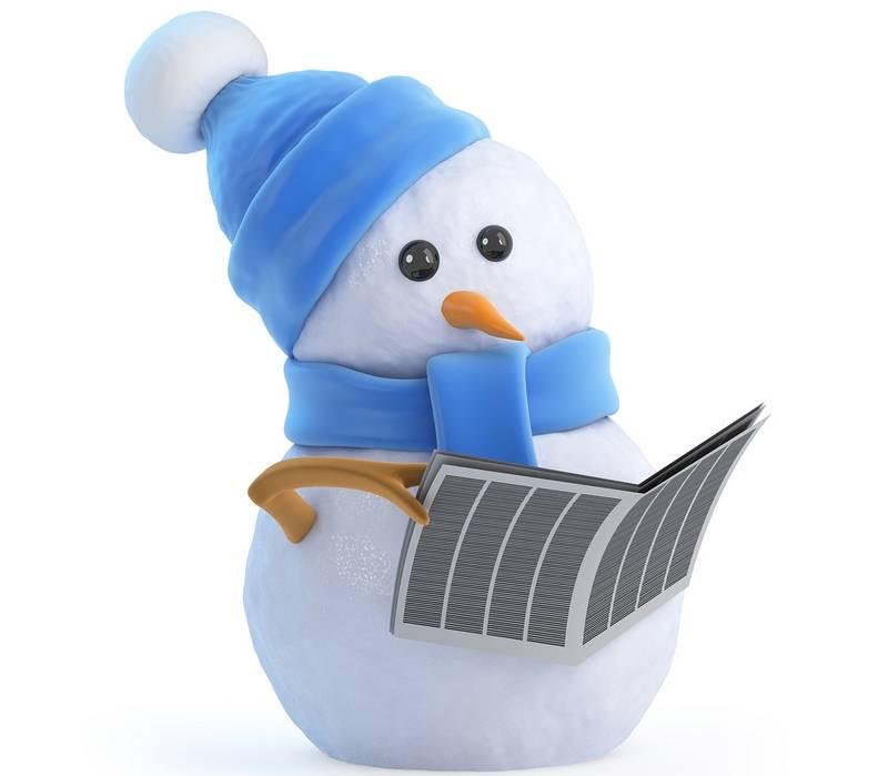 снеговик с газетой.jpeg